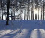 冬天,记忆温暖