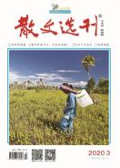 安徽作家罗光成《三河的时光》刊于《散文选刊·下半月》
