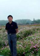 作家高岳山散文《寻春苏家河》《黄陂湖春讯》发于《人民日报》海外版