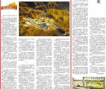 潘小平报告文学《大湾村的媳妇们》发于《人民日报》