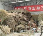 罗光成报告文学《赵雅丽的梦想》刊于《中国艺术报》